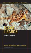 Texas Lizards