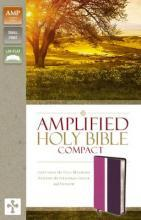 Amplified Holy Bible, Compact, Imitation Leather, Pink/Purple