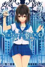Strike the Blood: Labyrinth of the Blue Witch (Novel) Vol. 4
