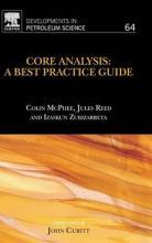 Core Analysis: A Best Practice Guide: Volume 64