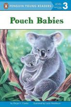 Pouch Babies