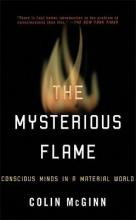 The Mysterious Flame