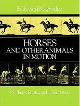 Horses and Other Animals in Motion