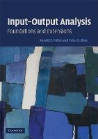 Input-Output Analysis