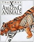 X-Ray Picture Book of Amazing Animals