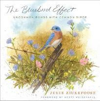 The Bluebird Effect