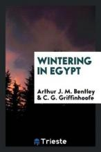 Wintering in Egypt