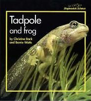 Stopwatch Big Book: Tadpole and Frog