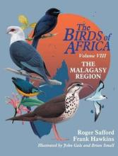 Birds of Madagascar: Volume 8