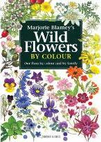 Wild Flowers by Colour