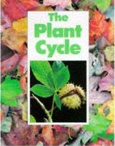 The Plant Cycle
