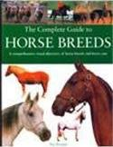 Complete Guide to Horse Breeds