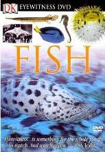 Eyewitness DVD: Fish