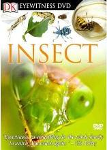 Eyewitness DVD: Insect
