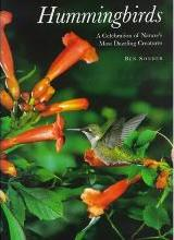 Hummingbirds: a Celebration of Nature's Most Dazzling Creatures