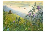 Robert Bissell Pastoral Boxed Small Notecards