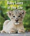 Baby Lions at the Zoo