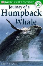 The Journey of a Humpback Whale