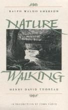 Nature of Walking