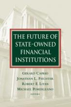 The Future of State-Owned Financial Institutions