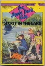 Secret in the Lake