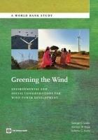 Greening the Wind