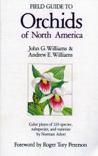Field Guide to Orchids of North America