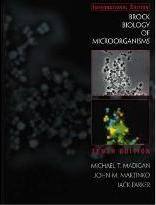 Biology & Fundamentals of Pharmacology & Brock Biology of Microorganisms & Principles of Human Physiology