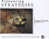 Pioneering Strategies, Concepts of Pioneering and Planting Churches