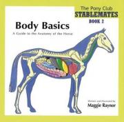 Body Basics - a Guide to the Anatomy of the Horse