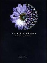 Invisible Images