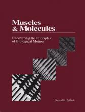 Muscles & Molecules