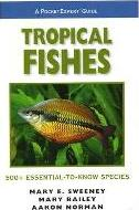 Tropical Fishes, a PocketExpert Guide