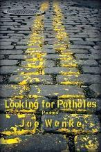 Looking for Potholes