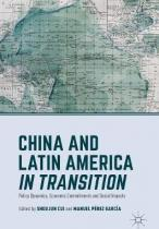 China and Latin America in Transition