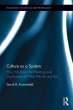 Culture as a System