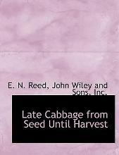 Late Cabbage from Seed Until Harvest