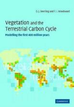 Vegetation and the Terrestrial Carbon Cycle: Modelling the First 400 Million Years