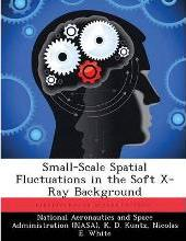 Small-Scale Spatial Fluctuations in the Soft X-Ray Background