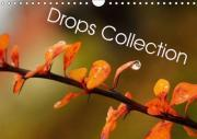 Drops Collection 2017