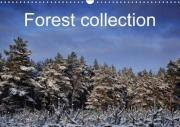 Forest Collection 2018