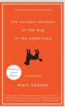Curious Incident of the Dog in the Nigth-Time, the