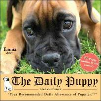 The Daily Puppy 2009