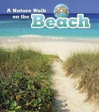 A Nature Walk on the Beach