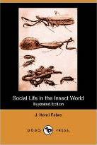 Social Life in the Insect World (Illustrated Edition) (Dodo Press)