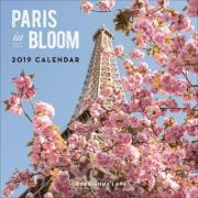 Paris in Bloom 2019 Wall Calendar