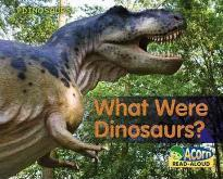 What Were Dinosaurs?