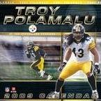 NFL Player Troy Polamalu 2009 Calendar