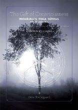 Gift of Consciousness: Patanjali's Yoga Sutras: Book 1