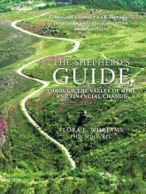 The Shepherd's Guide Through the Valley of Debt and Financial Change